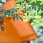 【初心者向け】キャンプの必需品 3大キャンプ道具