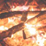 焚き火で焼きマシュマロ最高